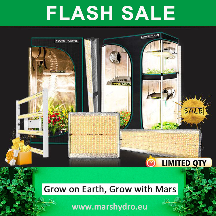 Grow with Mars Hydro LED Grow light & Grow Tent