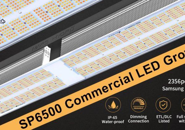 SP6500_samsung_lm301b_full_sepctrum_led_grow_light_banner